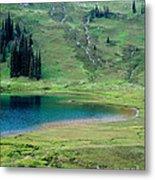 Image Lake Metal Print