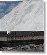 Jones Island Salt 1 Metal Print