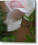 July  Rose Thought Metal Print