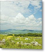 Large Blueberry Field With Mountains And Blue Sky In Maine Metal Print by Keith Webber Jr