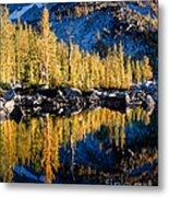 Leprechaun Lake Larches Metal Print