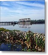 Little Washington Trestle Metal Print by Joan Meyland