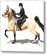 Lovely Gaited Buckskin  Metal Print