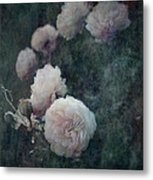 Perennial Gardens - Fall #04 Metal Print