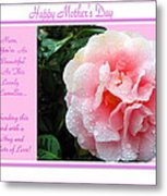 Pink Camellia - Happy Mother's Day Metal Print