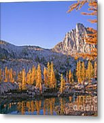 Prusik Peak Behind Larch Trees Metal Print