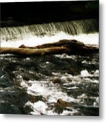 Little Log That Could Metal Print