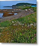 Rocky Harbour In Gros Morne Np-nl Metal Print