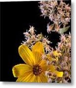 Shy Yellow Flower Metal Print