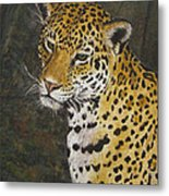 South American Jaguar Metal Print
