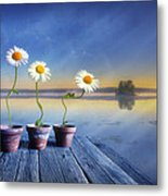 Summer Morning Magic Metal Print