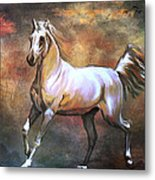 Wild Horse. Metal Print