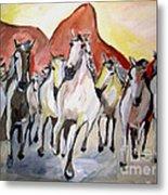 Wild Mustangs Metal Print by Sidney Holmes