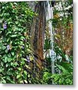 001 Falling Waters For The Cactus Lover In You Buffalo Botanical Gardens Series Metal Print