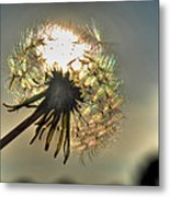 001 Make A Wish At Sunset Metal Print