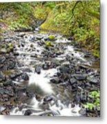 0106 Columbia River Gorge Near Bridal Veil Falls Metal Print