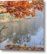 0132 Autumn At Starved Rock Metal Print