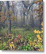0133 Misty Meadow 2 Metal Print