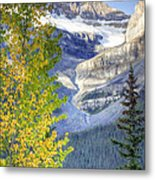 0141 Fall Colors On Icefield Parkway Metal Print