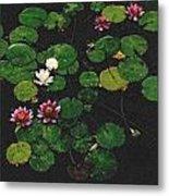 0151-lily -  Pastel Chalk 2 Sl Metal Print