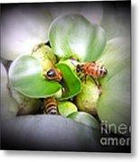 1 . 2 . 3 . Honeybees Metal Print