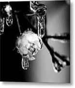 Rose And Frozen Leafs In Cold Winter Tones Metal Print