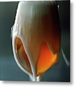 A Glass Of Beer Metal Print