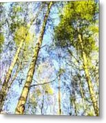 A Quiet Forest Metal Print