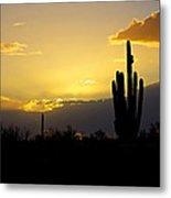 A Saguaro Sunset  Metal Print