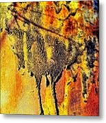Ablaze Metal Print by Tom Druin