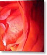 Abstract Orange Rose 10 Metal Print
