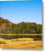 Adirondack Color Vi Metal Print