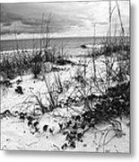 After The Storm Bw Metal Print