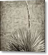 Agave And Adobe Metal Print