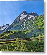 Alaska Railroad To Denali Metal Print