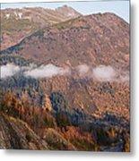 Alaskan Mountains Metal Print