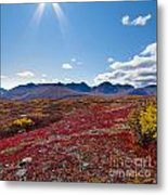 Alpine Landscape In Fall Metal Print