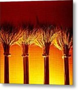 Amber Grains 2 Metal Print