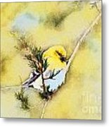 American Goldfinch - Digital Paint Metal Print