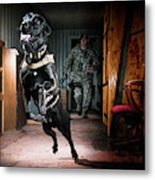 An Air Force Security Forces K-9 Metal Print