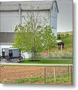An Amish Farm Metal Print by Dyle   Warren
