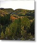 An Avalanche Of Color Metal Print