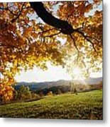Late In The Day And A Setting Sun Metal Print