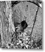 An Old Mill Stone Ely's Mill Roaring Fork Bw Metal Print