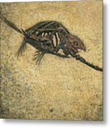 Ancient Turtle Metal Print