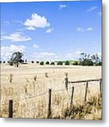 Arid Agricultural Landscape In South Tasmania Metal Print