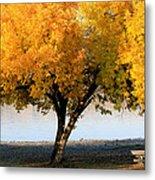 Autumn At The River Metal Print