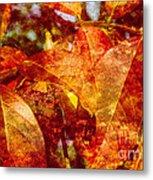 Autumn Bright Metal Print