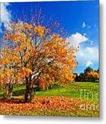 Autumn Fall Landscape Metal Print