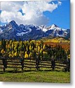 Autumn Fences Metal Print